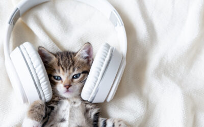 18 Great Podcasts for Language Professionals